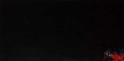 Splurge in Black - S.F. 24 x 48 in