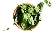 "<img src=""Spinach_edited.png"" alt=""a bowl filled with spinach leaves"">"