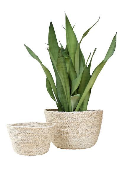 Minikin Jute Bowl – Natural