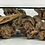 Thumbnail: Large Sculptural Driftwood Burl Coffee Table with Free-Form Glass Top