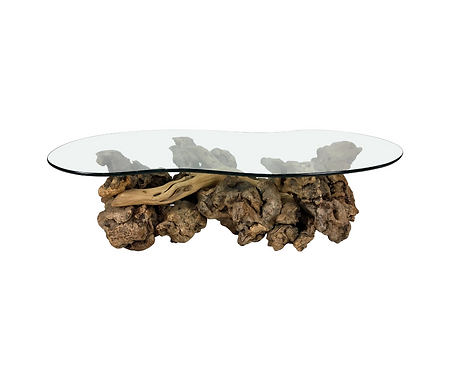 Large Sculptural Driftwood Burl Coffee Table with Free-Form Glass Top