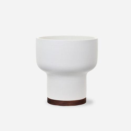Case Study Mushroom with Plinth
