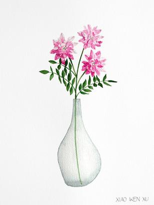 Crown Vetch Bouquet in Vase, 2021