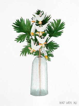 Dutchman's Breeches Bouquet in Vase, 2021