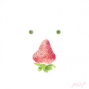 Mr. Strawberry, 2017
