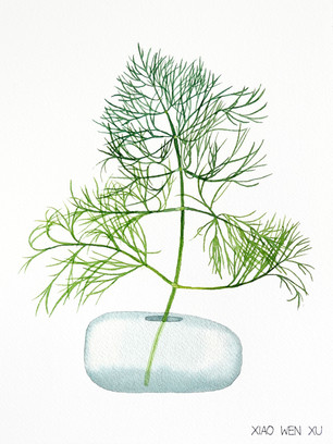 Fennel Bouquet in Vase, 2021