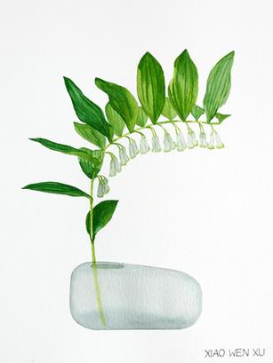 Hairy Solomon's Seal Bouquet in Vase, 2021