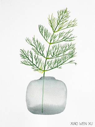 Dill Bouquet in Vase, 2021