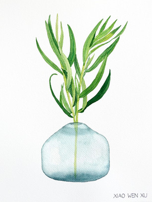 Tarragon Bouquet in Vase, 2021