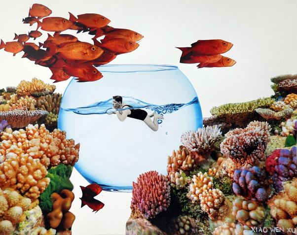 Human Aquarium, 2021