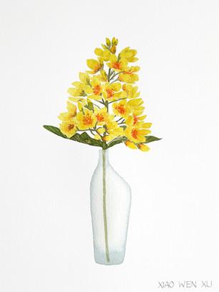 Garden Yellow Loosestrife Bouquet in Vase, 2021