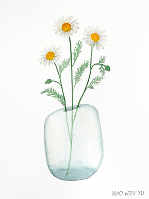 Chamomile Bouquet in Vase, 2021