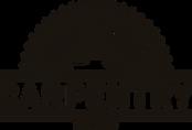 Top Team Carpentry Logo