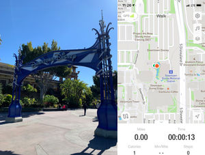 Disneyland is my Cardio- Part 1: Disney's California Adventure