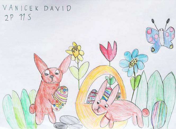 David - 2P