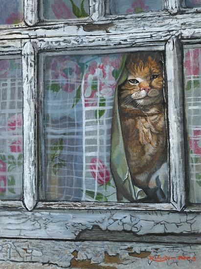 Ginger Cat Watching