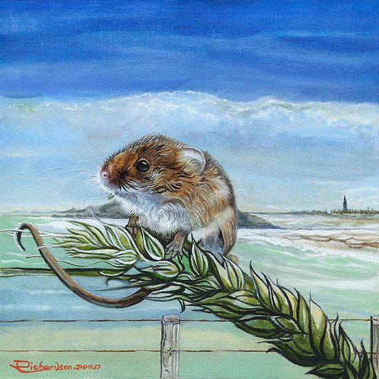 Winston Corn Mouse