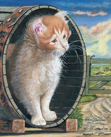 The Farmers Cat