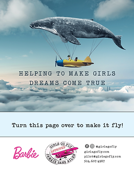 Whale Plane Image Page.png