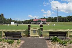 Alexandria cricket 1.JPG