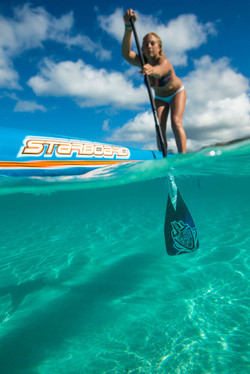 Performance SUP Paddle