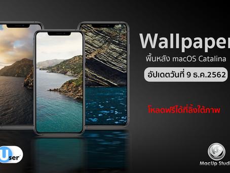 ภาพพื้นหลัง (Wallpaper) ตัดจากพื้นหลังของ macOS Catalina สำหรับ iPhone