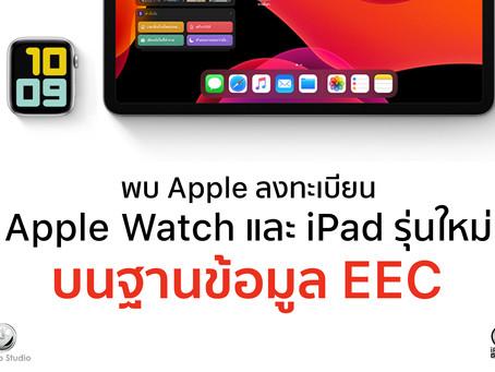 พบ Apple ลงทะเบียน Apple Watch และ iPad รุ่นใหม่ บนฐานข้อมูล EEC