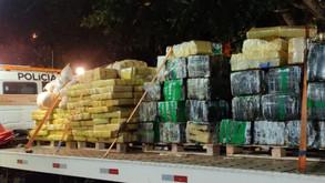 PM encontra quatro toneladas de maconha em chácara abandonada