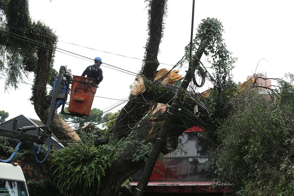 Defesa Civil diz que 23 mil foram atingidos por temporais