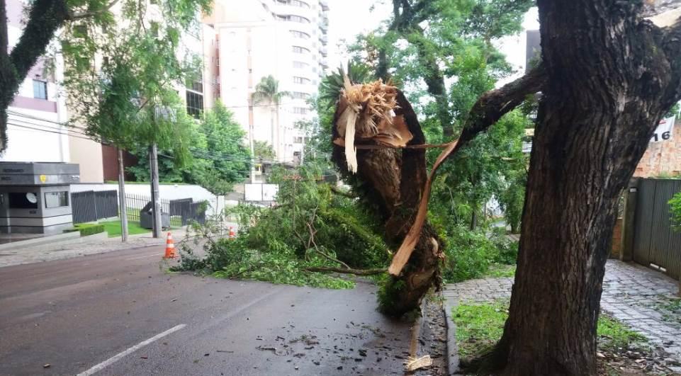 Ventos fortes deixaram 100 mil sem luz em Curitiba