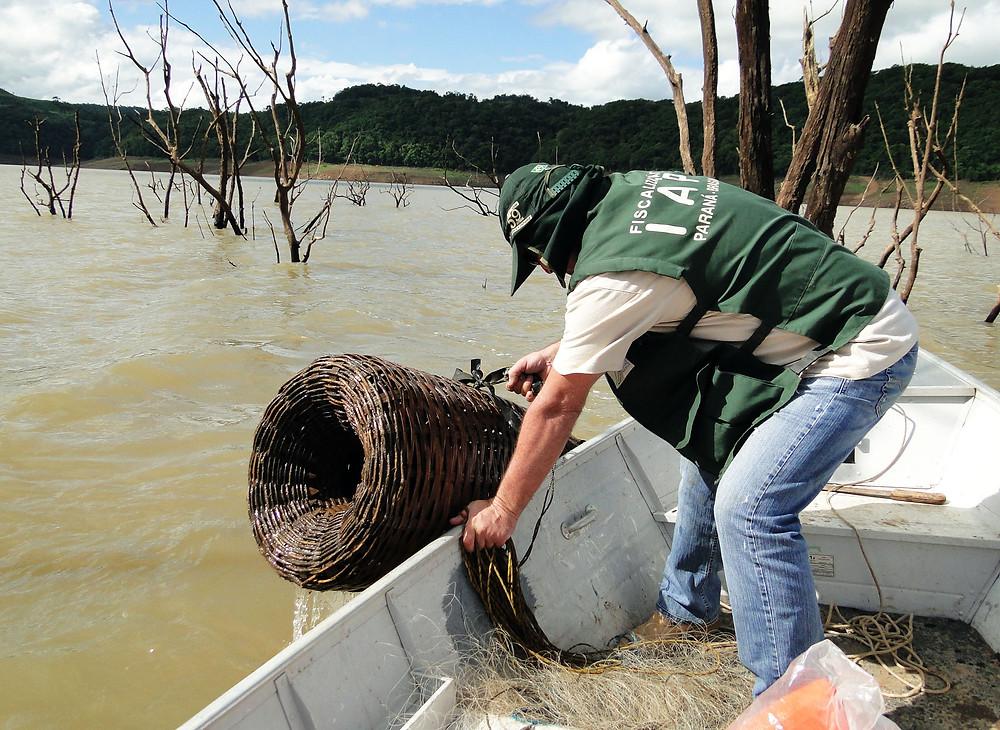 Proibição à pesca de espécies nativas inicia nesta quinta