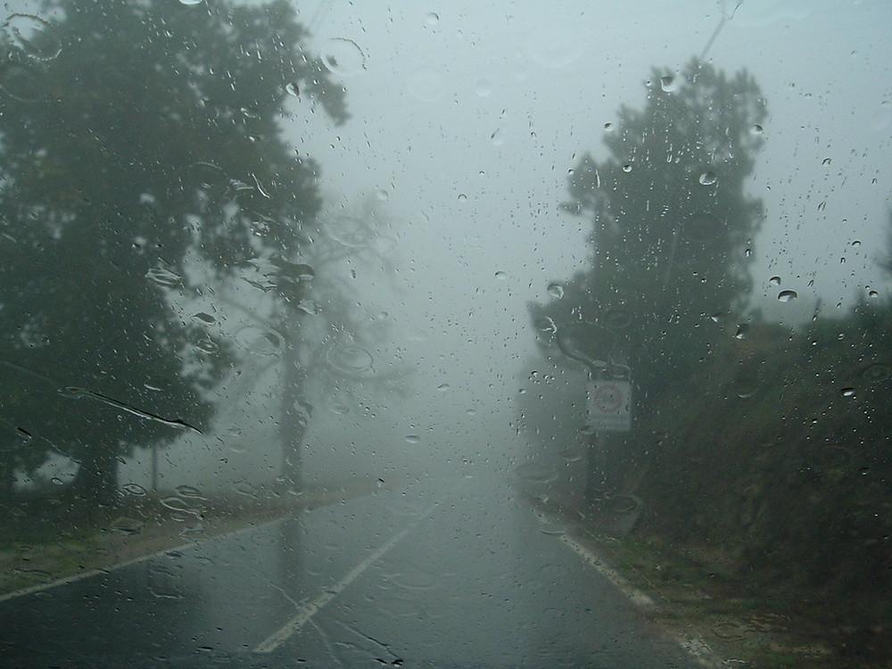 Instituto emite alerta de ventos de até 100 km/h em Curitiba