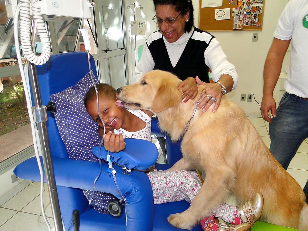 Cães auxiliam crianças e adolescentes com deficiências