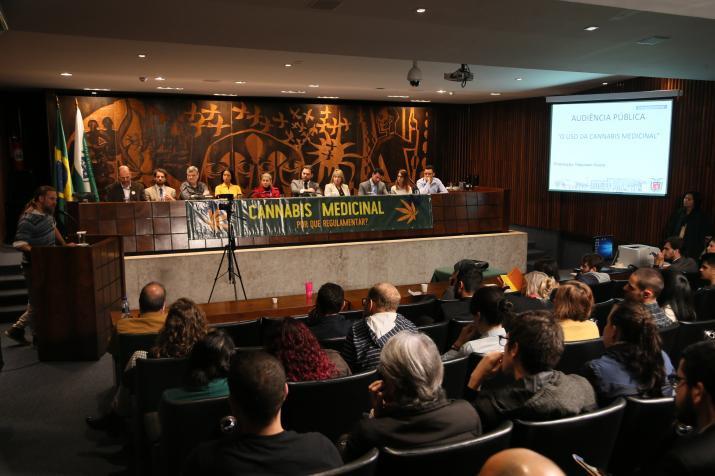 Assembleia debate regulamentação da cannabis medicinal