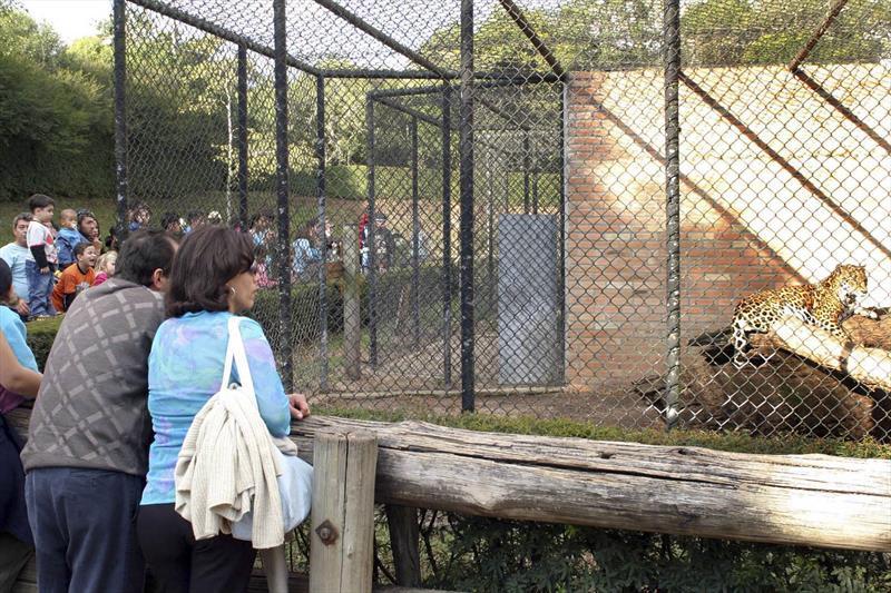 Zoo de Curitiba integra grupos para conservação da fauna