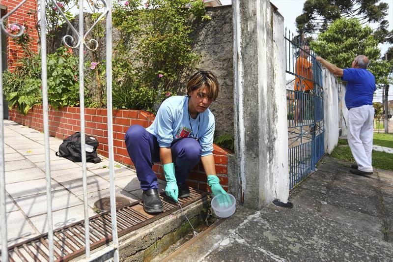 Curitiba tem índice zero de infestação do Aedes aegypti