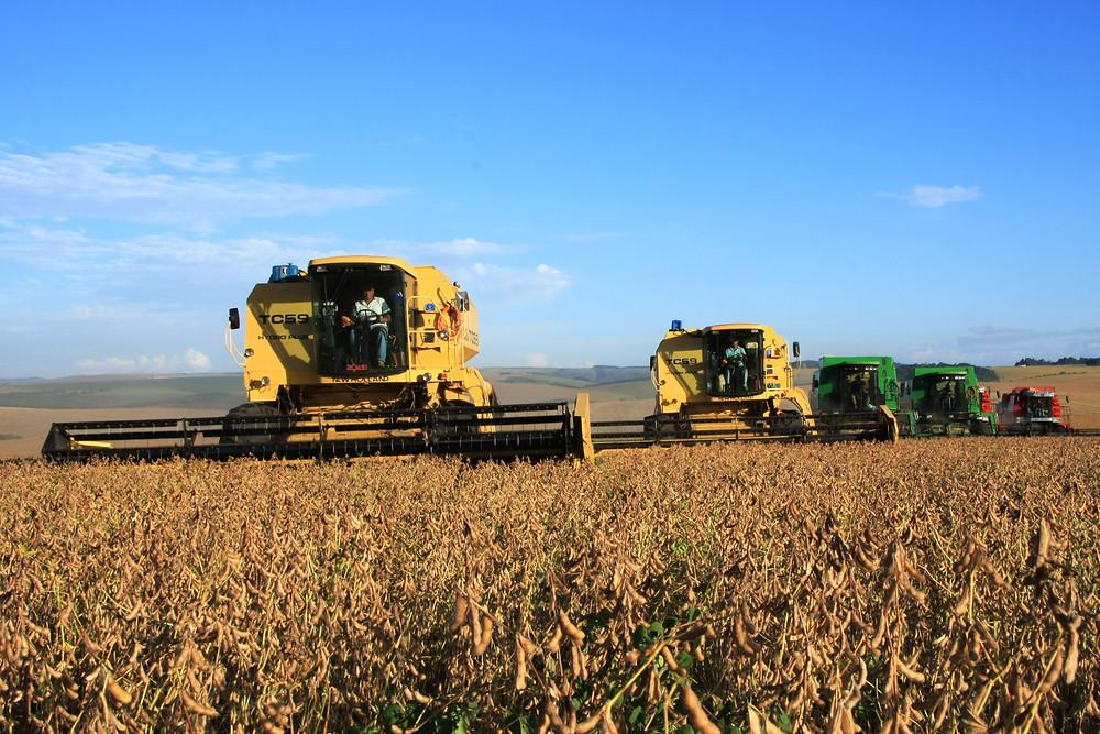 Paraná terá produção de 23 milhões de toneladas de grãos
