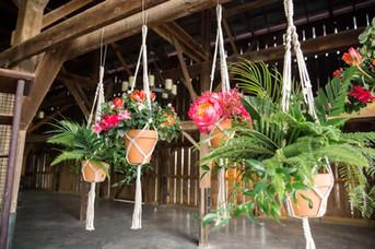 Hanging-Tropical-Flowers.jpg