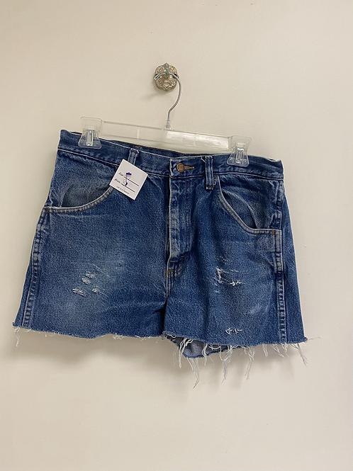 Size 17 Denim Shorts