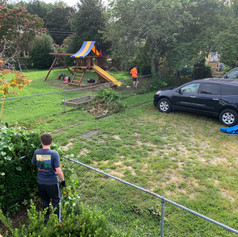 There was plenty of work! (Especially pulling out morning glory and other vines and creepers).