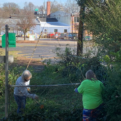 The volunteers removed the vines and bushes little by little.