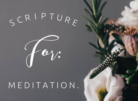 Bible Verses for: Meditation