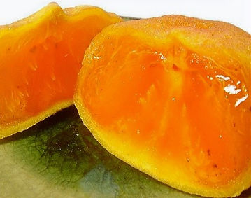 fruits-line_anpo-hiratane_8_edited.jpg