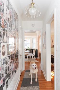 Family Photos Hallway and darling dog