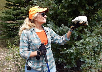 A woman hiker holds holds an animal skull in front of an evergreen