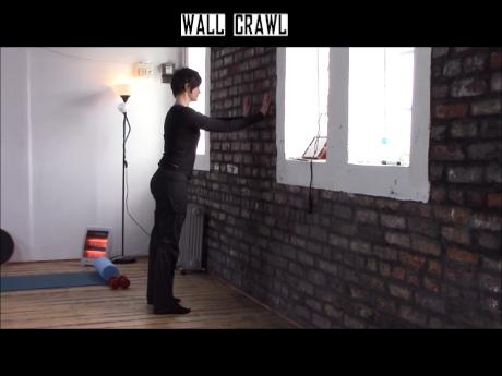 Wall Crawl.wlmp