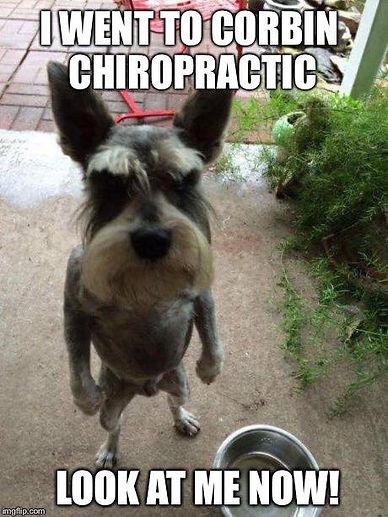 Chiropractic meme posture.jpg