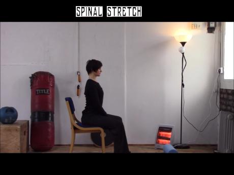 Erector Spinae Stretch.wlmp