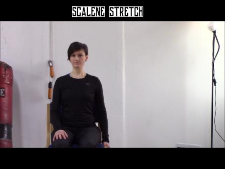 Scalene Stretch.wlmp