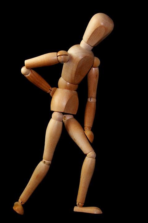 Wooden anatomy model